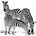 Naklejka zebra nr 815