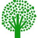 Naklejka drzewo nr 885